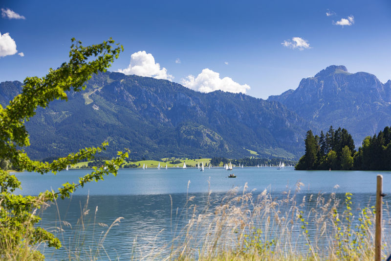 Lake Forggensee in Bavaria with sailboats and Tegelberg in the background Activity Allgaeu Allgäu Allgäuer Alpen Alps Alpsee Bavaria Beauty In Nature Blue Boat Forggensee Füssen Germany Holiday Mountain Outdoors Panorama Parasol Sailboat Summer Swimming Sauling Tegelberg Tranquility Vacation
