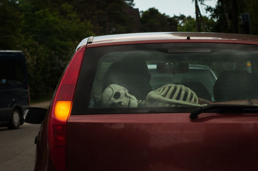 Skeletons in the... trunk? Don´t leave grandpa in a hot car? Aren´t you supposed to transport your victims inside the trunk? So many questions while fumbling for my camera :D Backseatdriver Car Cars Funny Kids In The Back Seat Mode Of Transport Passenger Skeleton Transportation Windshield Windshield Shots View From My Car Window View From The Car View From Car