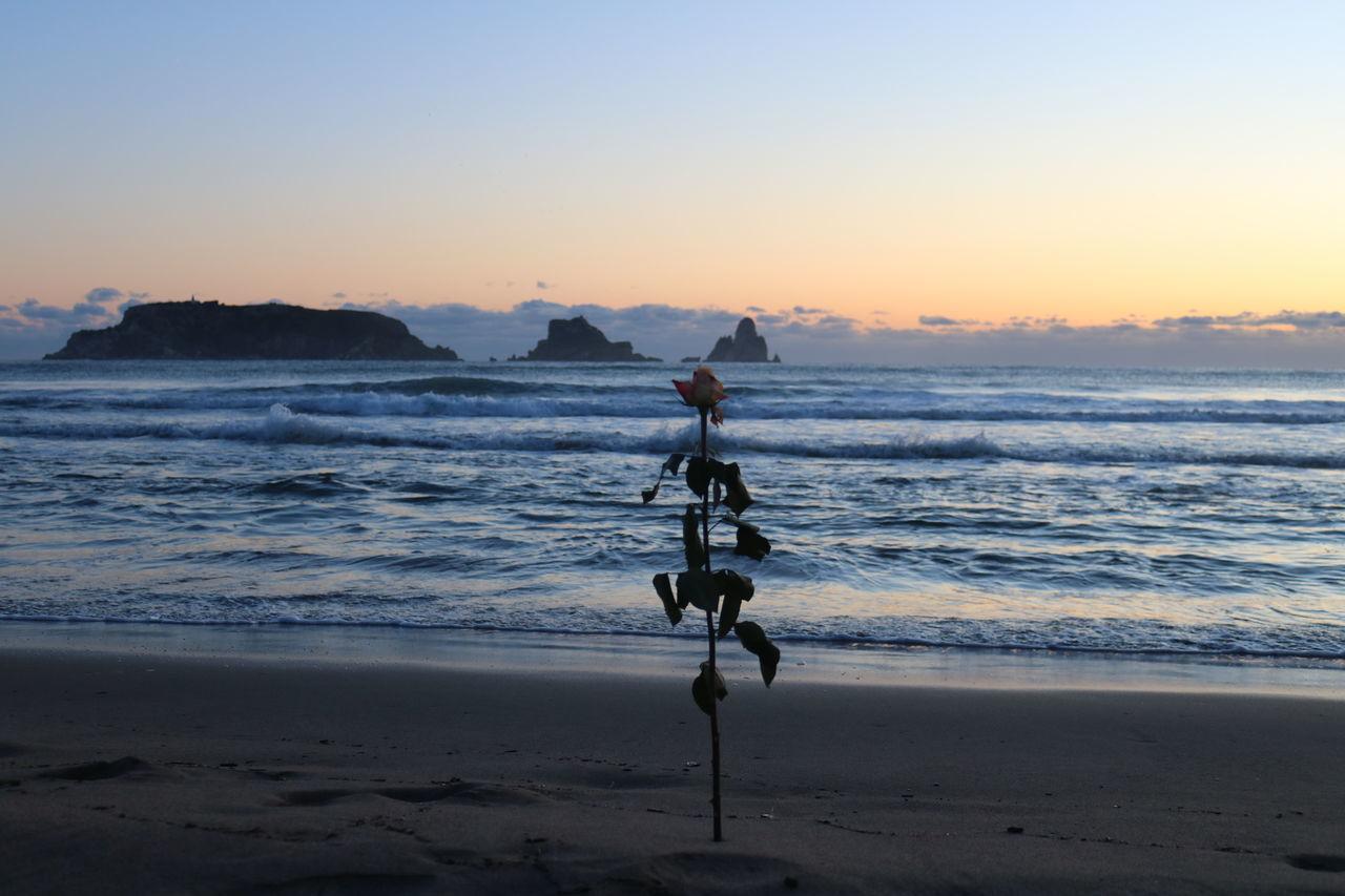sky, water, sea, beach, land, sunset, beauty in nature, scenics - nature, motion, horizon over water, wave, sand, nature, horizon, clear sky, tranquility, tranquil scene, idyllic, sport, outdoors