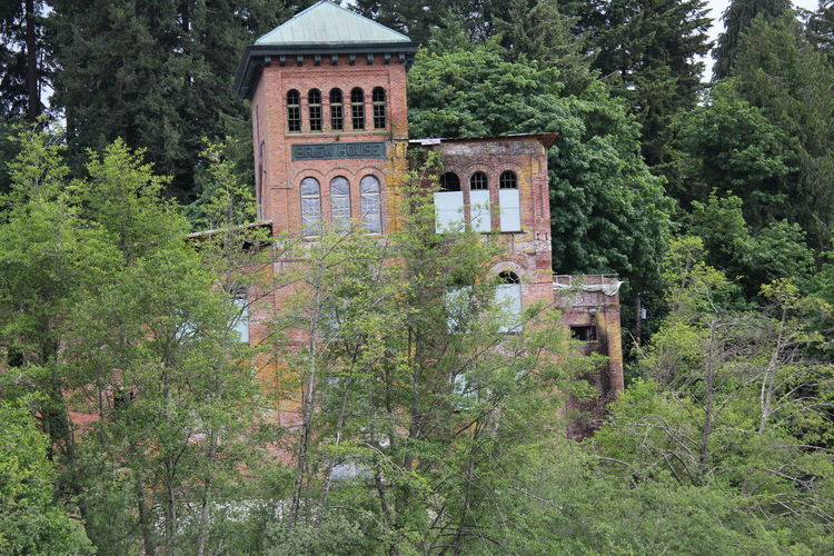 Tumwater Brewery Tumwater Historic Park Abandoned Architecture Building Building Exterior Built Structure Day Foliage Forest Green Green Color Growth Land Lush Foliage Nature No People Old Outdoors Plant Tree Window