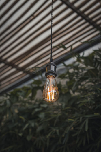 Lighting Equipment Electricity  Light Bulb Illuminated Electric Light Light Glowing Technology Hanging Close-up Low Angle View No People Filament Indoors  Fuel And Power Generation Focus On Foreground Cable Ceiling Glass - Material Bulb Power Supply Electric Lamp Electrical Equipment