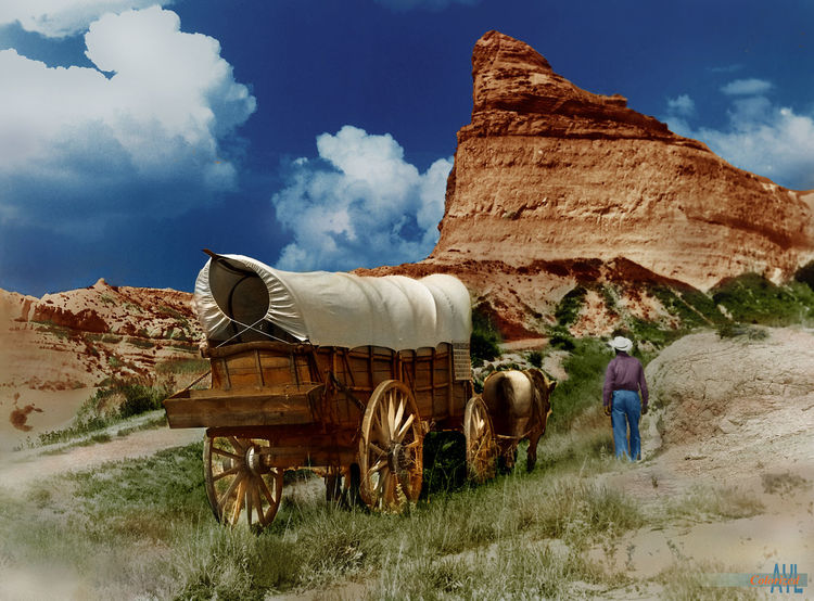 Alternate shoot, Conestoga Wagon on the Oregon Trail (re-enactment) Conestoga Wagon Oregon Trail Beauty In Nature Cloud - Sky Colorized Day Field Landscape Nature Outdoors Sky Standing