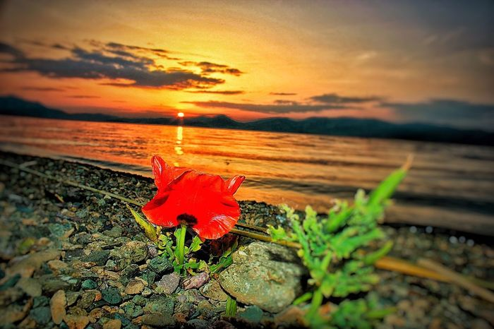 Sunset Yakamoz Aşk Landscape Hello World Relaxing Hot Today's Hot Look Gunes Love