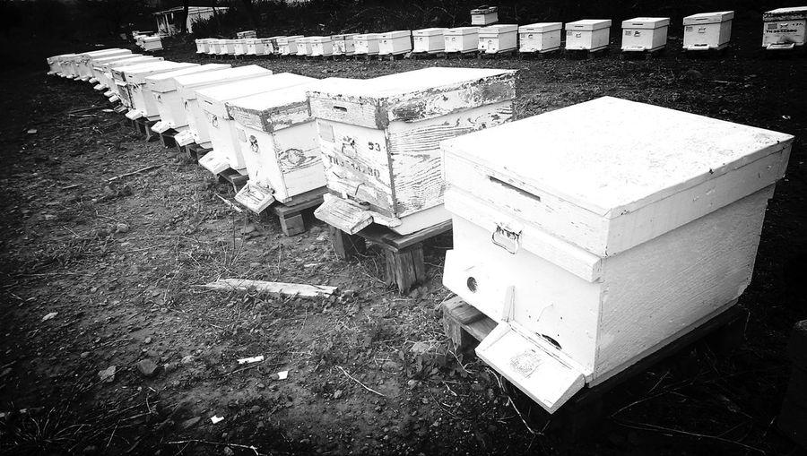 Bee Nature Honey Vilage
