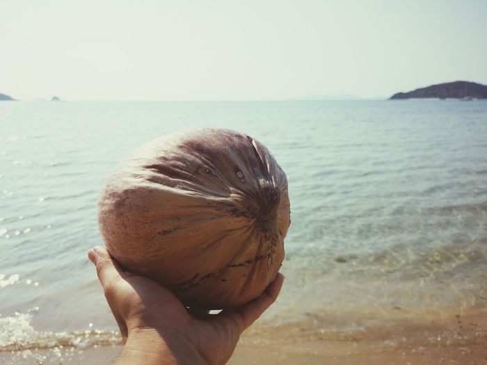 Midsection of person holding apple at beach against sky