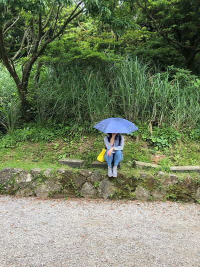 Waiting For Someone Someone For Waiting Real People Umbrella Green Color One Person Protection Day Plant Sunlight Lifestyles High Angle View Rain Outdoors Leisure Activity Growth Security Nature Land Field Rainy Season Grass