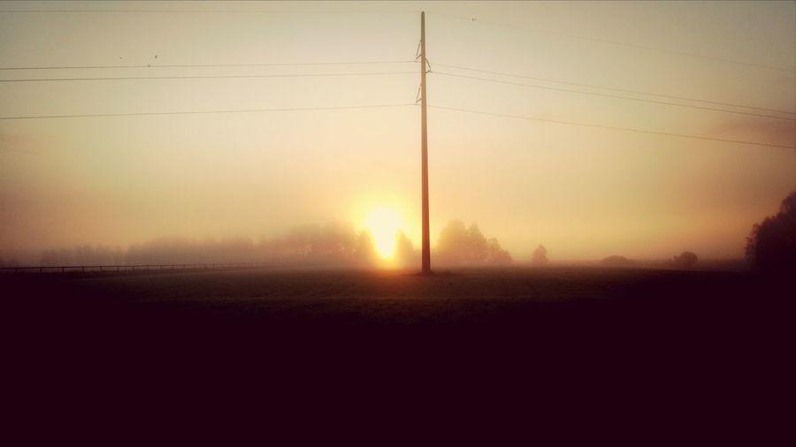 Fog n Sun Nature Sunrise Morning