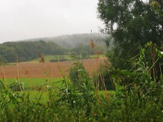 Schlechtes Wetter Im Grünen
