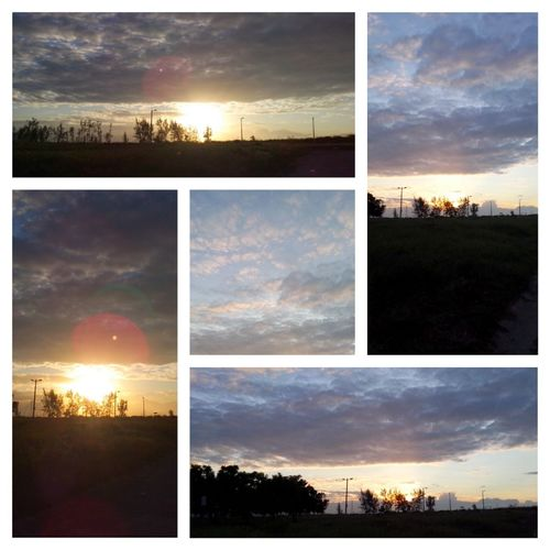 Sunset Dramatic Sky Cloudy Sunset Cloudy Sky Sunset_collection Sunset_captures Nonfilter EyeEm Nature Lover Taking Time To See The Little Things Sky And Clouds Sunsetscape Taking Photos Collage Multiple Image Lovesunsets Sunsetlover Sunset Madness