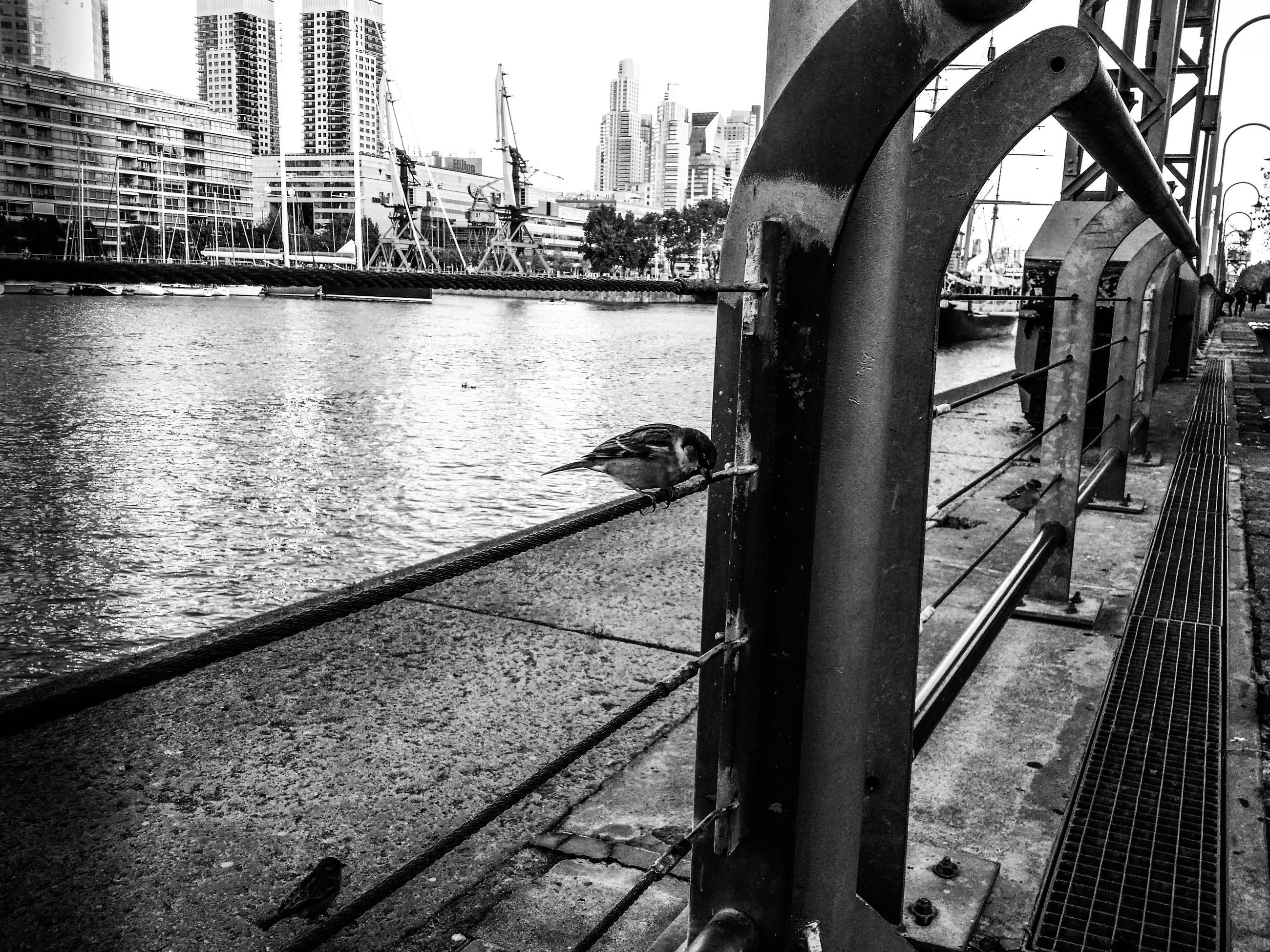 water, architecture, built structure, building exterior, river, city, bridge - man made structure, connection, transportation, metal, railing, canal, mode of transport, cityscape, day, nautical vessel, bridge, outdoors, engineering, no people