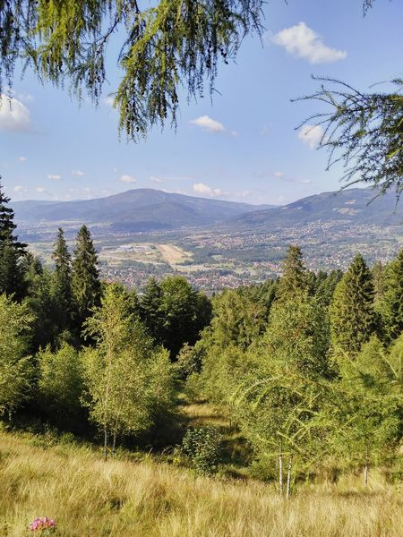 Beautiful Beskid Śląski Mountais landscape in Poland, view from Chatka Studencka Rogacz in Beskid Mały. Beskid Beskidy Beskid Slaski Beskid Maly Rogacz Poland Mountain Mountains Landscape View Nature Trees Tree Horizon Bucolic Outdoors Town Valley Afar Dale