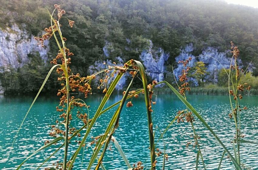 Nature Water No People Beauty In Nature Outdoors Travelphotography Travel Inthenature Plitvice National Park Watercolor Water_collection Plitvicelakes Plitvice Lakes National Park Beautiful Nature Beauty In Nature Lake EyeEm Nature Lover Eyeemphotography Photoofnature