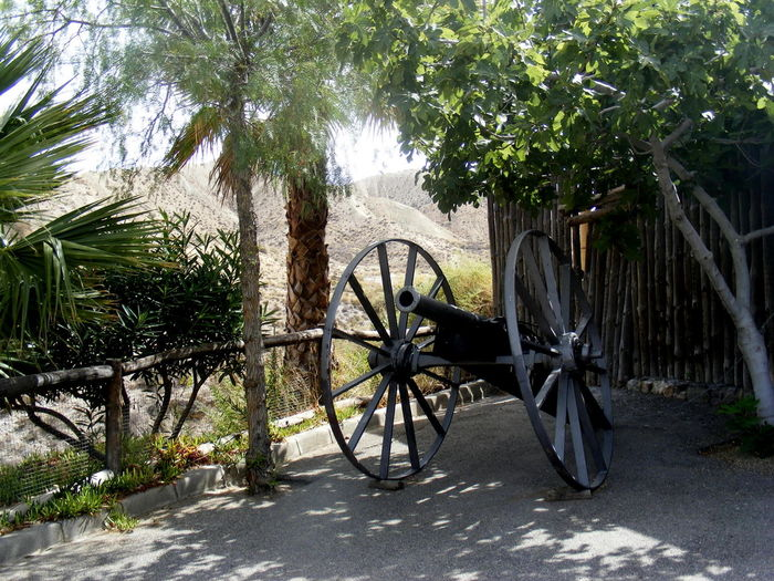 Agriculture Cart Day Nature No People Objects Old-fashioned Outdoors Tree Wagon Wheel Water Wheel Watermill Wheel