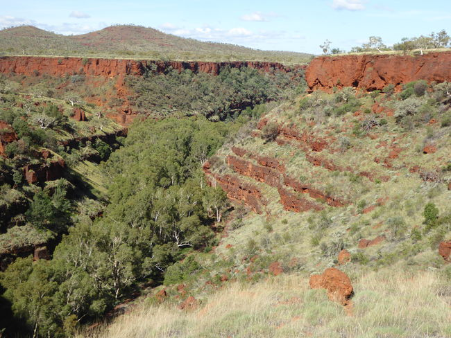 Beauty In Nature Canyon In Central Australia Errosion Eucalyptus Trees Geology Iron Ore Country Landscape Mountain Nature No People Outdoors Physical Geography Rock - Object Rock Layers Scenics The Great Outdoors - 2017 EyeEm Awards Tranquil Scene Tranquility Weathered Landscape