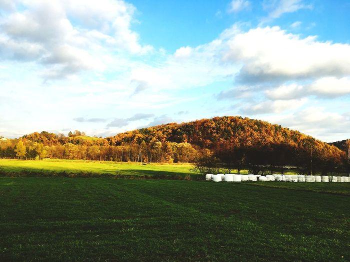 Autumn Polishautumn Sky Nature Magicmoment 2nd