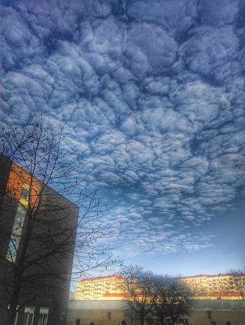 Gothenburg Winter Clouds