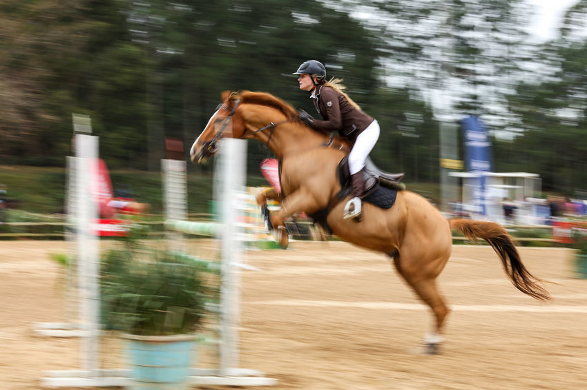 Horse Jumping Competition Enjoyment Horse Horse Jumping Horse Jumping Competition Horse Photography  Horse Riding Horsejumping Horses Jumping Jumping Horses Lifestyles Motion Motion Blur Motion Photography Motionphotography Outdoors Panning Riding Riding Horses Show Jumping South Africa