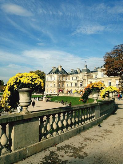 Paris Jardin Du Luxembourg Automne Enjoying Life Flowers Beautiful Day Sunny Day France Autumn Colors Chilling