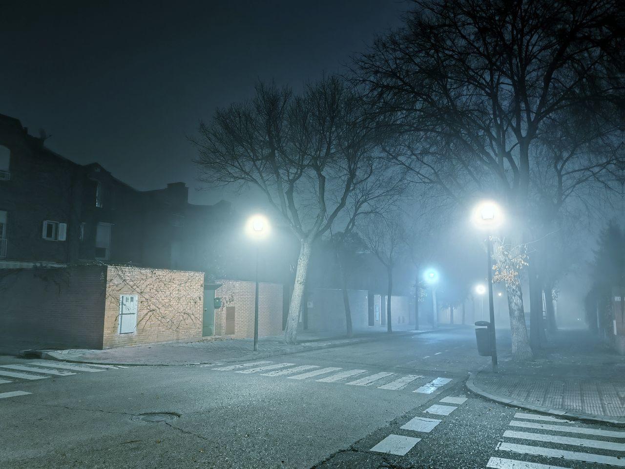 EMPTY ROAD ALONG ILLUMINATED TREES AT NIGHT