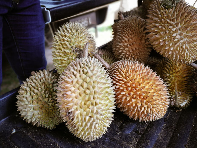 Durians for sale. Vendor Unique Tempoyak Smelly Fruit Seller Outdoors Malaysia Fruits Fruit Photography Fruit Food Durian Fruit Delicious Car Boot Sale Booth Thailand Smelly Excotic Durians Durian Food And Drink Close-up Freshness No People Spiked Wellbeing Market Day Healthy Eating Focus On Foreground High Angle View Still Life Nature Tropical Fruit Plant Cactus For Sale Spiky