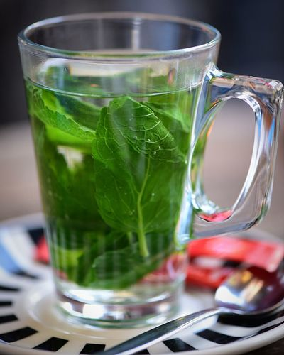 Testikel Teatime Getränk Cup Tasse Stilleben Stiil Life Grün Spearminttea Spearmint Minztee Food And Drink Drink Refreshment Leaf Herb Food Mint Leaf - Culinary Drinking Glass Close-up Mint Tea Glass Green Color Freshness No People Tea Healthy Eating Plant Part Tea - Hot Drink Household Equipment