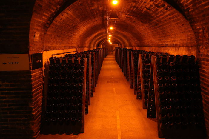 Alcohol Barrel Basement Bottle Cellar Champagne Day Drink Food And Drink Illuminated In A Row Indoors  Large Group Of Objects No People Underground Warehouse Wine Wine Bottle Wine Cask Wine Cellar Wine Rack Winemaking Winery Winetasting