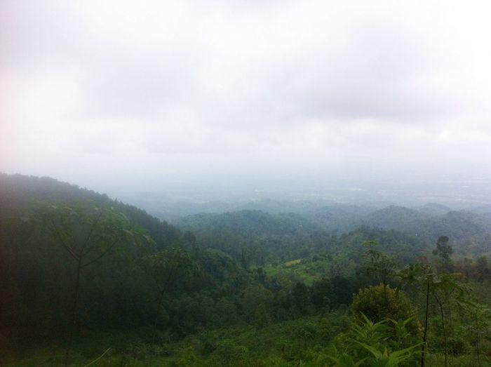 Hutan yang hijau kita lestarikan jangan sampai kita rusak! Exploretasikmalaya