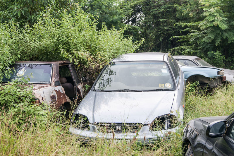Car Damaged Day