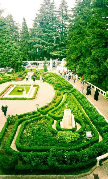 Tree Green Color Ornamental Garden Growth Travel Destinations No People Architecture Outdoors Day Nature Flower Flowers Flower Collection Atatürk Köşkü AtatürkDemekTürkiyeDemektir❤ ATATÜRK ❤ Beauty In Nature Landscape Built Structure Tree Architecture People Turkey Trabzon ❤ Trabzon