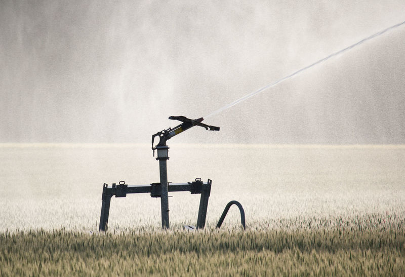 Agriculture Field Irrigation Equipment Spraying Agricultural Field Farm Grain Growth Irrigation Jet Land Mist No People Water Water Jet Water Mist Water Veil Water_collection