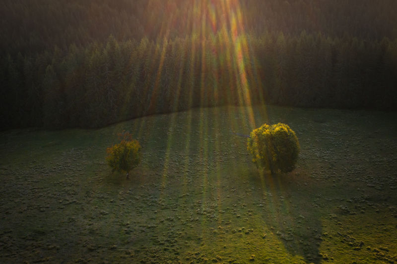 Last day of september in a beutiful cold Mountains - Romania. Drone  EyeEmNewHere Landscape Photography Nature Romania Aerial Aerial Landscape Aerial Photography Aerial View Beauty In Nature Dronephotography Droneshot Environment Forest Landscape Lens Flare Moody Nature No People Non-urban Scene Plant Sunset Tranquil Scene Tranquility Tree