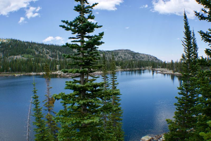 Clouds Peak Wilderness, Bighorn National Forest Wilderness Landscape Alpine Tree Plant Water Scenics - Nature Sky Tranquility Tranquil Scene Nature Cloud - Sky Beauty In Nature Lake Growth Reflection Day Forest Green Color Outdoors Land No People