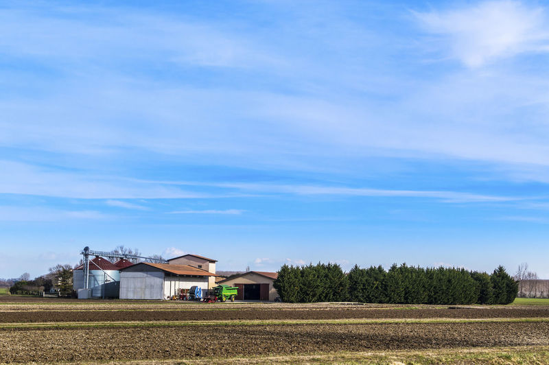 View of agricultural field against blue sky