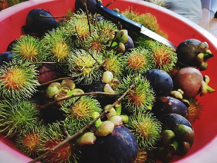Malaysian Local fruits Mixfruits Malaysianlocalfood Malaysianlocalfruits Close-up Prepared Food Serving Size Ready-to-eat First Eyeem Photo