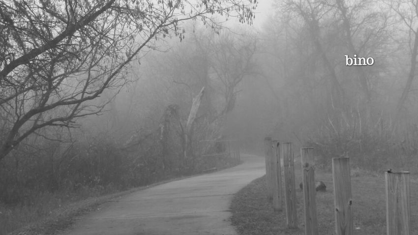 Taking A Walk Around My Neighborhood Foggy Cool!! Black And White Photography Eerie Beautiful Clam River Walkway Cadillac Michigan