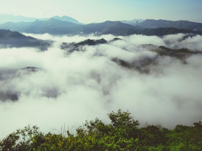 Sea of clouds from Mt.hapunang banoi, Philippines. Mountain View Mountain Range Mountain_collection Mountains And Sky Eyeem Philippines