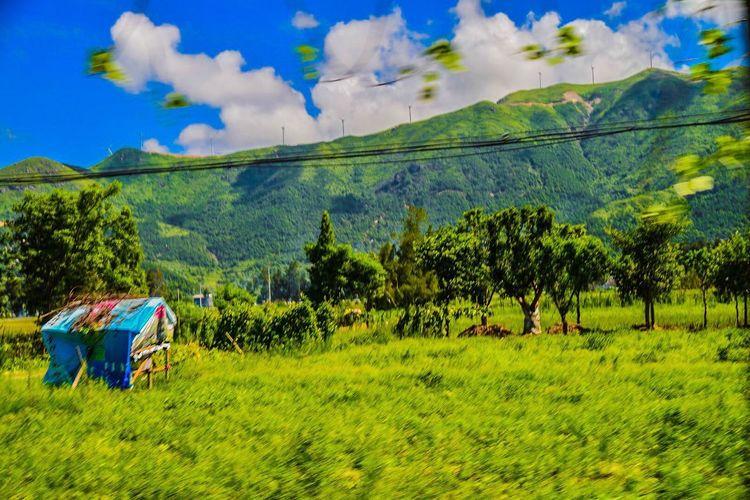 Things That Are Green Landscape EyeEm Best Edits EyeEm Best Shots