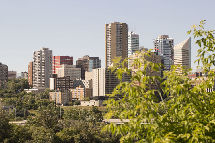 its a pretty good city Edmonton Architecture Building Exterior Built Structure City City Life Cityscape Clear Sky Day Downtown District Growth Modern No People Outdoors Sky Skyscraper Tree Urban Skyline