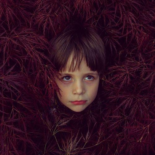 Cute boy hiding in plants