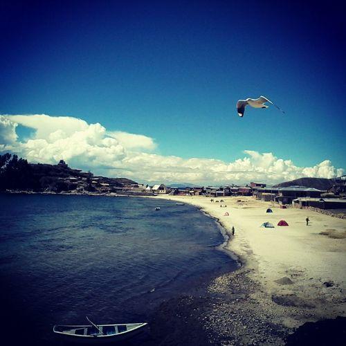 Everyday Joy Enjoying Life Southamerica Isladelsol Titicaca Lake