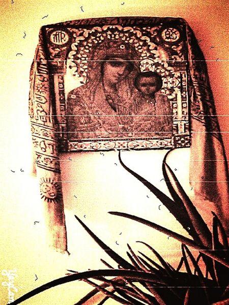 Mary, Jesus & Aloe Vera