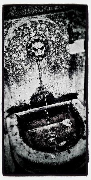 Streetphotography Streetphoto_bw Blackandwhite Fountain