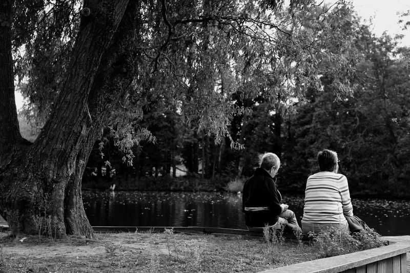 Rear View Of Friends Sitting In Park