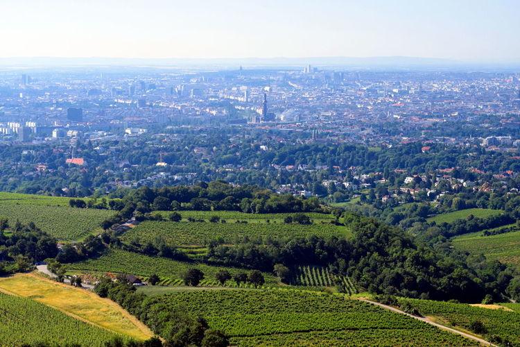 Vienna and