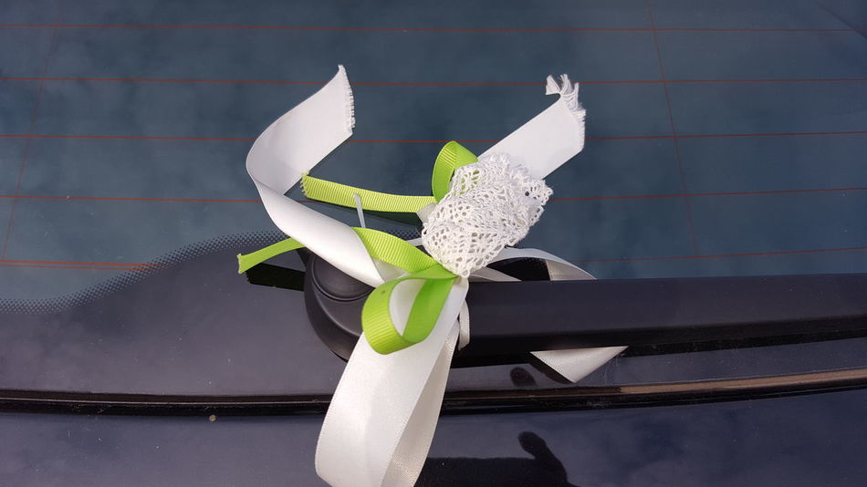 Blossom Botany Close-up Day Flower Flower Head Fragility Freshness Green Green Color Growing Growth Marriage  No People Petal Plant Wedding Car Decor