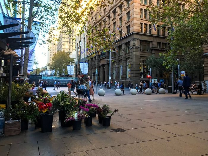 Florist Plaza Florist Building Exterior Plant Built Structure Architecture City Tree Nature Street Day Women Transportation Real People Group Of People Building Men Mode Of Transportation Motor Vehicle Land Vehicle Growth Car EyeEmNewHere Streetwise Photography