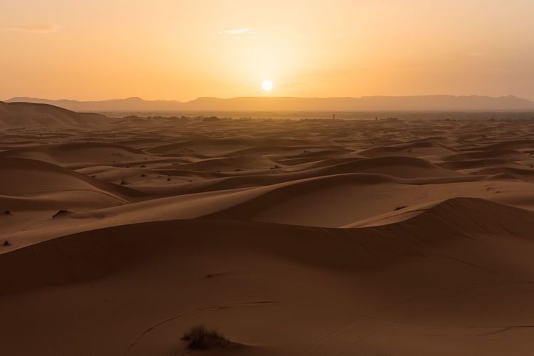 Sand Desert Scenics - Nature Landscape Beauty In Nature Tranquility Environment Sky Non-urban Scene No People Nature Remote Sahara Sahara Desert Morocco Morocco 🇲🇦 Sundown Sunset Desert Landscape Idyllic Outdoors Sand Dune