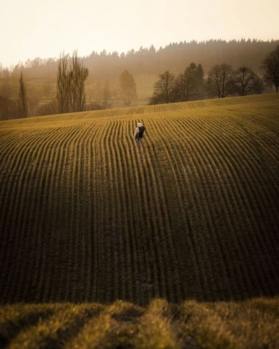 High angle view of young woman walking on agricultural field against sky