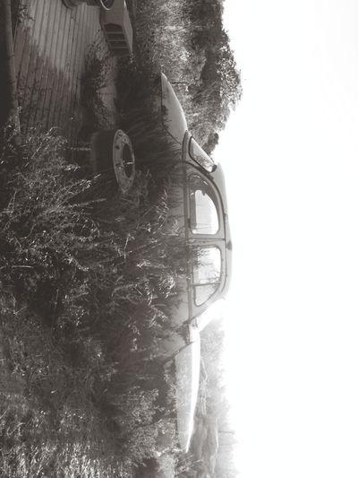 Blackandwhite Car Collection Landscape Penhard