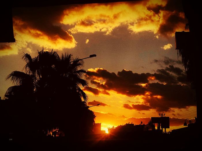 Mersin Sunset Sky Silhouette Cloud - Sky Tree Plant Orange Color Nature Scenics - Nature Dramatic Sky Beauty In Nature Outdoors Built Structure No People Tranquil Scene Architecture Tranquility Idyllic Palm Tree Building Exterior My Best Photo My Best Photo My Best Photo